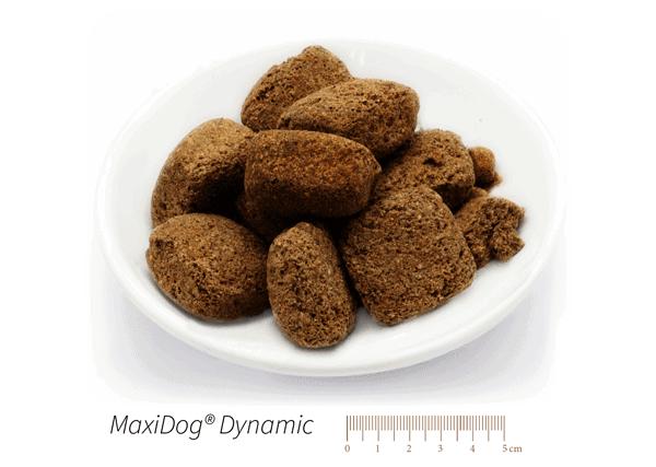 Dieses Bild zeigt das Reico Trockenfutter Maxidog Dynamic Brocken